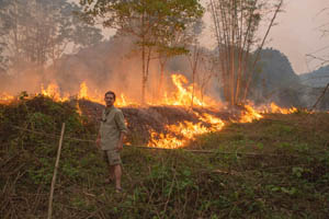 Laos - Slash and Burn Farming.