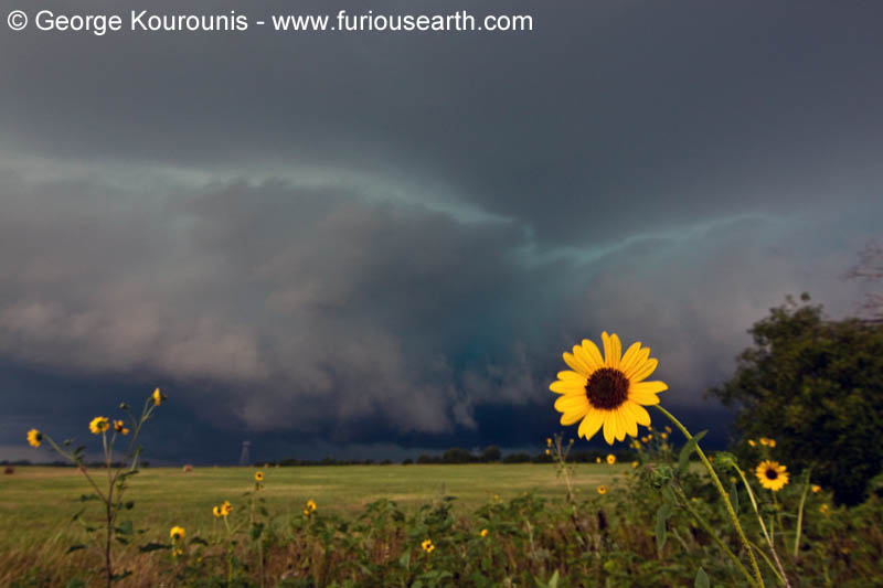 Tornado Chase 2012