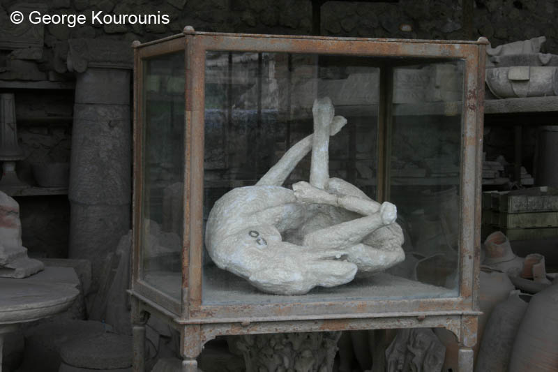 Pompeii Bodies Dog The body cast of a contortedPompeii Ruins Bodies