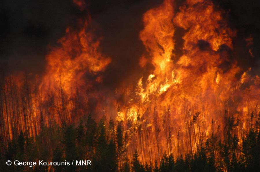 """forest fires """"we have forest fires every year, but never so many big ones in such a short time, """" said the acting chief of the fire station, gunnar lundström,."""